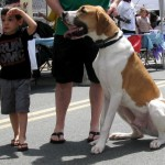 BCC Rotary Club hosts Strut Your Mutt dog parade